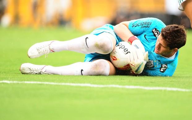 Rafael Cabral - Palmeiras x Santos (Foto: Marcos Ribolli / globoesporte.com)