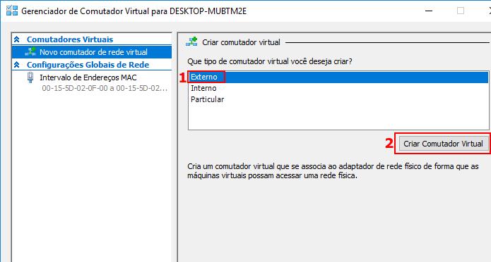 Escolhendo o tipo de comutador virtual (Foto: Reprodução/Edivaldo Brito)