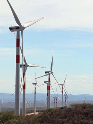 Parque eólico foi inaugurado em Sento Sé, na Bahia (Foto: Manu Dias/ GOV BA)