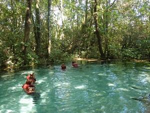 Passeio inclui a visita à nascente e às corredeiras do Rio Tamanduá  (Foto: Areia que Canta/Divulgação)