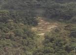 Artistas e ambientalistas criticam decreto que extinguiu reserva