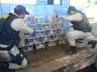 Motorista é preso com 38 pássaros em porta-malas de carro em MT