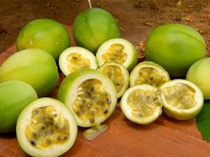 Nova variedade de maracujá está sendo testada por pesquisadores da Embrapa no Tocantins (Foto: Reprodução/TV Anhanguera)