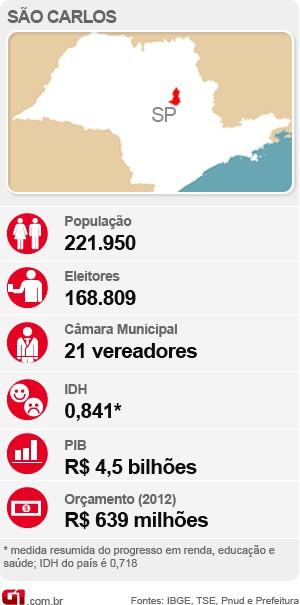 Perfil da cidade de São Carlos (Foto: Arte G1)
