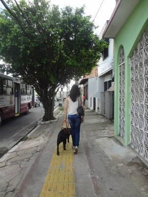 Sheba consegue desviar de obstáculos altos, como galhos de árvores (Foto: Natália Mello / G1)
