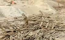 Mulher é arrastada por lama no Peru