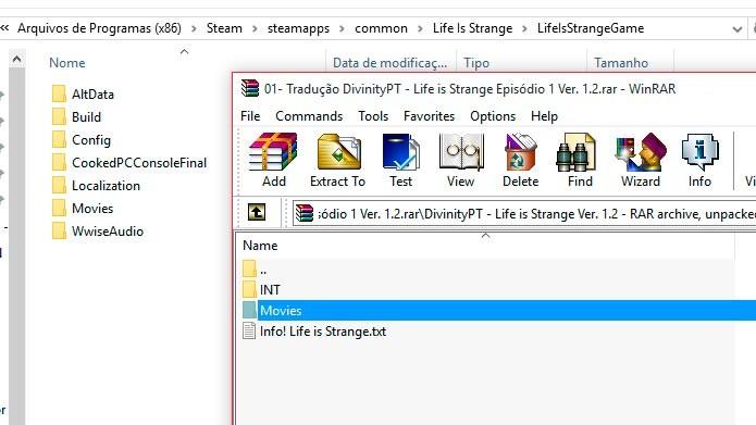Extraia e substitua os arquivos na pasta do game (Foto: Reprodução/Tais Carvalho)