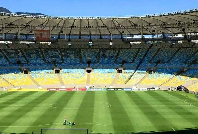 Mosaico Vasco Maracanã final (Foto: Arquivo pessoal)