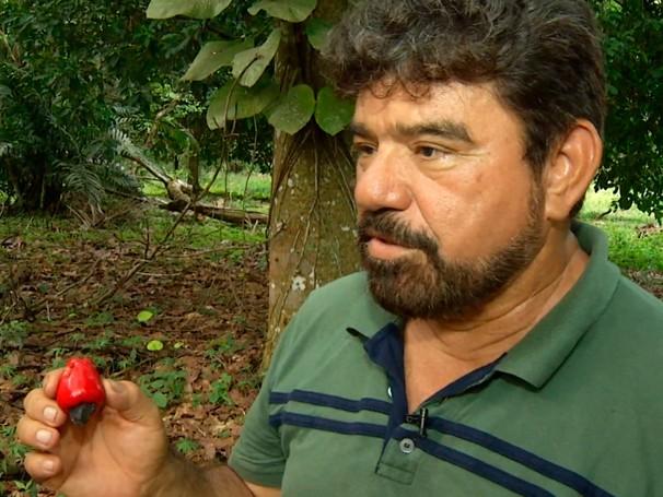 Pomar de Ray já produziu mais de 160 espécies (Foto: Globo)