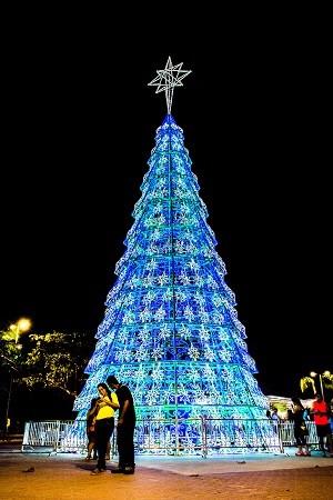 Árvore de natal com 21 metros de altura foi colocada ao lado da Praça Multieventos (Foto: Jonathan Lins/G1)