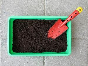Terra precisa ser afofada e adubada antes de receber as plantas (Foto: Divulgação/Pixabay)