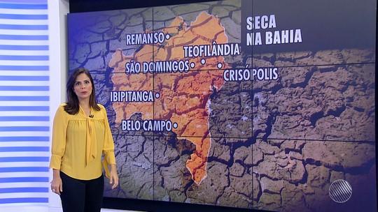 Sete cidades baianas têm situação de emergência reconhecida pelo governo federal por conta da seca