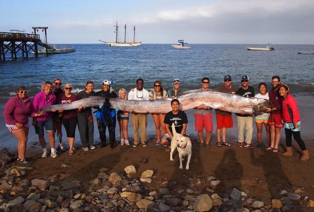 Peixe gigante de 5,4 m é encontrado normalmente a 900 m de profundidade (Foto: Catalina Island Marine Institute/AP)