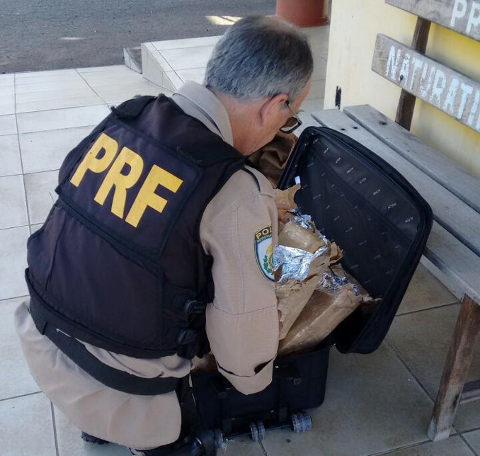 Polícia encontrou drogas no bagageiro de ônibus (Foto: PRF/Divulgação)