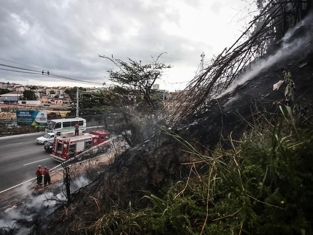 Incêndio atingiu área logo no início da manhã (Foto: Jonathan Lins/G1)