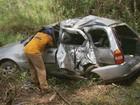 Batida de carro em árvore mata universitárias na BR-267, em MG