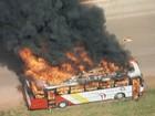 ANTT anuncia reforço de 210 ônibus na parte sul do Entorno do DF