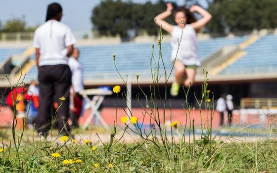 Complexo Desportivo do Ibirapuera (Foto: Rogério Cassimiro / ÉPOCA)