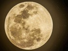 Parque de Campinas terá evento para assistir ao fenômeno raro Super Lua