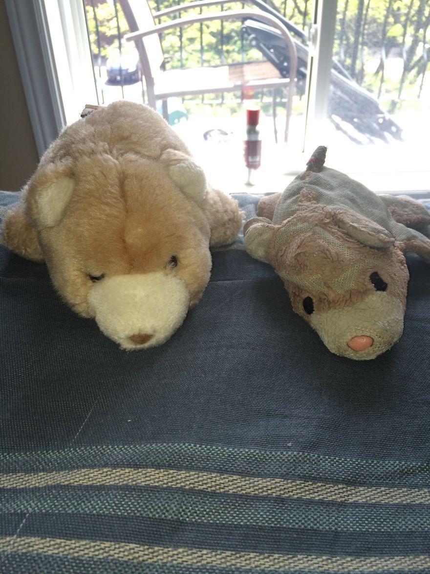 Mãe comprou dois ursinhos de pelúcia idênticos - um para o filho e outro para o futuro neto