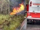 Motorista de caminhão morre carbonizado após acidente na Bahia