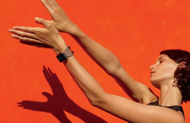 O modelo da Hermès (Foto: Divulgação)
