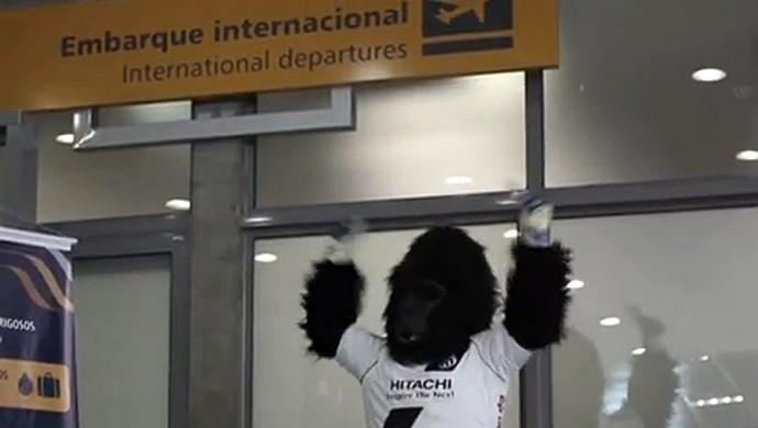 Gorilão masco Ponte Preta Macaca (Foto: Reprodução PonTV)