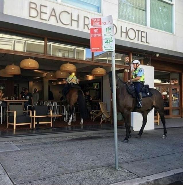 Policial montado entra em bar