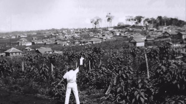 Meu Paraná relembra a História de Londrina com imagens antigas (Foto: Reprodução)