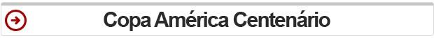 selo, resumo, copa américa centenário (Foto: G1)
