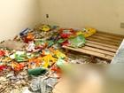 Inquilina diz não ter visto cães mortos no imóvel em Santa Maria, no RS