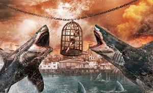 Império dos Tubarões