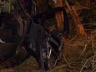 Homem morre e mulher fica ferida após carro bater em árvore na 262