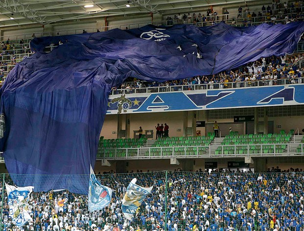 Montillo, Torcida do Cruzeiro (Foto: Washington Alves / Vipcomm)