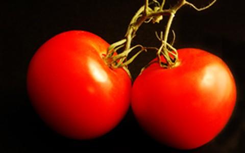Reeducação alimentar: confira o cardápio 1