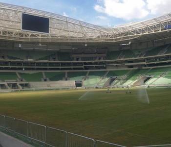 Gramado Arena Palmeiras (Foto: Divulgação)