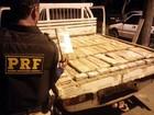 Dupla é presa com cerca de R$ 600 mil em fundo falso de caminhonete no PA