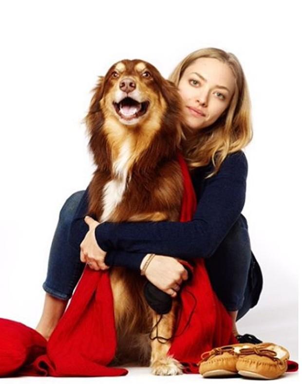 Amanda Seyfried e Finn (Foto: Reprodução)
