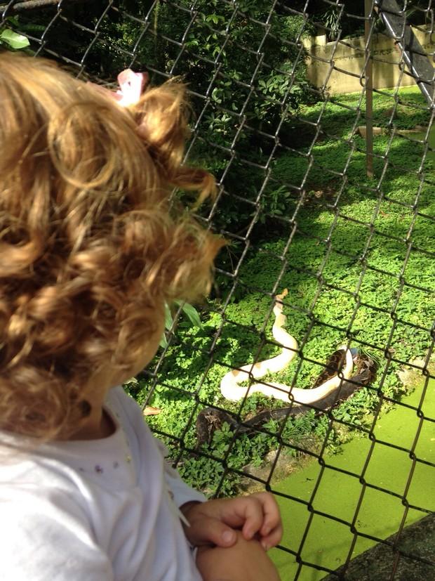 Maria Eduarda em visita ao zoológico pela primeira vez (Foto: Arquivo pessoal)