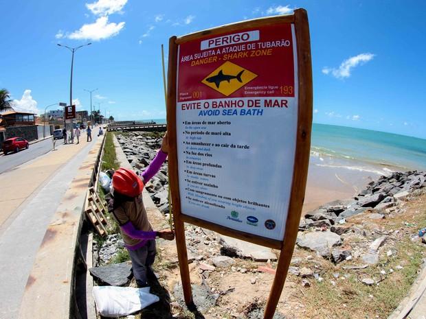 Grande Recife recebe novas placas de alerta contra tubarões (Foto: Marlon Costa/Pernambuco Press)