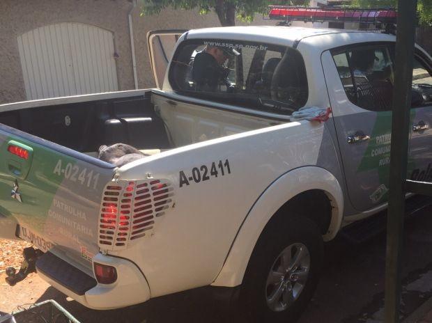 Polícia Ambiental foi acionada (Foto: Divulgação / ONG DPAM)