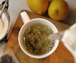 Chás para emagrecer: conheça cinco opções da bebida que potencializam a queima de gordura