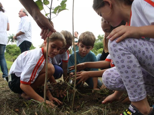 Crianças participaram do plantio de mudas nativas na cidade.  (Foto: Divulgação/ João Henrique Vieira de Azevedo )