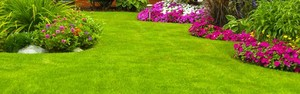 Saiba como escolher a grama ideal para sua casa (Reprodução/Pinterest)