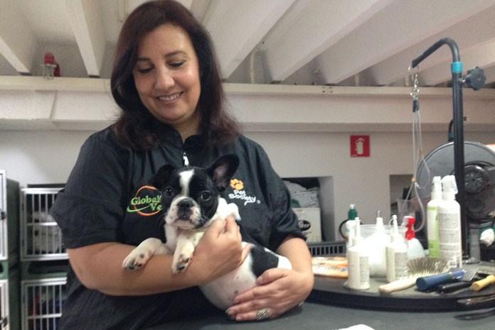 Esteticista animal ensina como dar banho a seco em cachorros