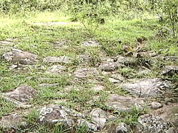 Estrada escravos Estrela do Sul (Foto: Reprodução/TV Integração)