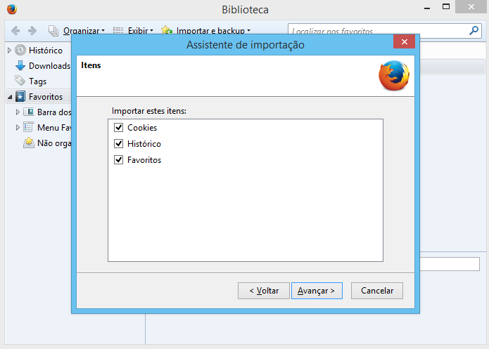 Selecione quais informações serão migradas para o Firefox (Foto: Reprodução/Helito Bijora)
