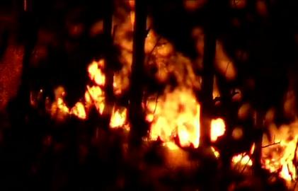 Fogo em vegetação dura sete horas na área urbana de Barra Mansa