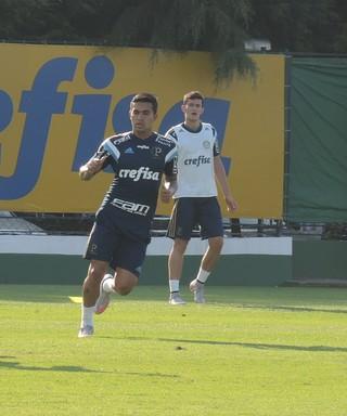 Dudu Palmeiras (Foto: Felipe Zito)