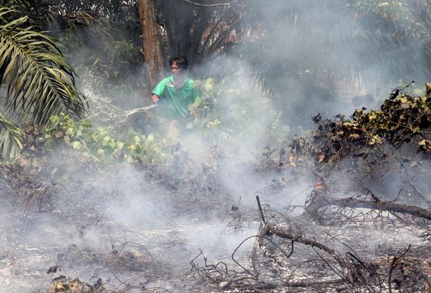 O ministro do Meio Ambiente da Indonésia disse que pode utilizar de meios artificiais para provocar chuva no país e conter o fogo (Foto: Rony Muharrman/AP)